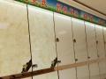 暖心发热瓷砖 发热芯片加盟 地板瓷砖