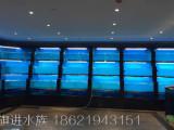海鲜池中国领先的上海鱼缸定制市场广阔,值得您的信赖