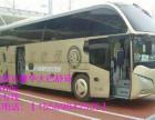 黄岛到舟山的客车15589842535汽车哪里有车票价多少?