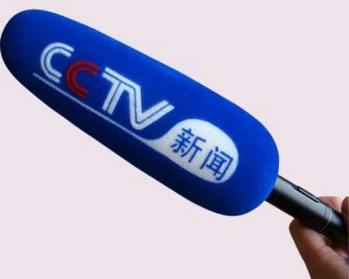 电视台记者专用采访话筒套植绒印LOGO