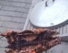 巴马香猪出售种猪仔猪宠物猪