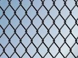 镀锌勾花网  绿化用勾花网 绿色包塑勾网 坚固耐用 厂家直销