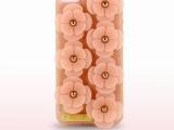 厂家直销新款iphone5/5s时尚花朵手机壳  磨砂透明TPU