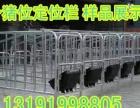 批发母猪定位限位架加厚镀锌管围栏保胎母猪床生产厂家世昌畜牧