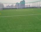 济南草坪施工 足球场草坪施工 质量好 价格低