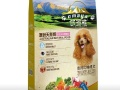 保龙迪宠物食品公司招代理可以代加工狗粮(可以提供包装)
