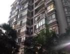 街道口 狮城公寓 4室 1厅 2卫 合租都是大学生狮城公寓