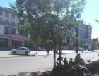 青龙县城临街商铺出租