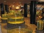 广州酒店商会开业典礼大批鱼缸租赁广州哪里出租鱼缸酒店鱼缸出租