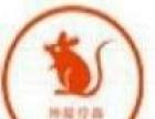 坤龙灭鼠灭蟑杀虫灭白蚁公司