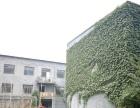 唐县 兴华大厦北步行街 写字楼 120平米