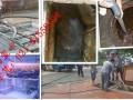 上海徐汇区专业疏通马桶地漏下水道 清洗管道化粪池隔油池清理