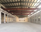 新会江海 睦洲独单一层 6千平方左右工业园厂房出租