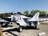 厦门军事模型厂家一比一飞机模型出租