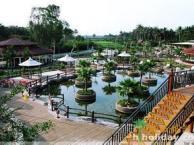 2月去海南旅游,武汉到海南三亚玩海部落双飞五日游,海南游多少钱
