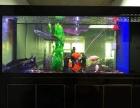 福州市鱼缸清洗维修护理安装鱼缸
