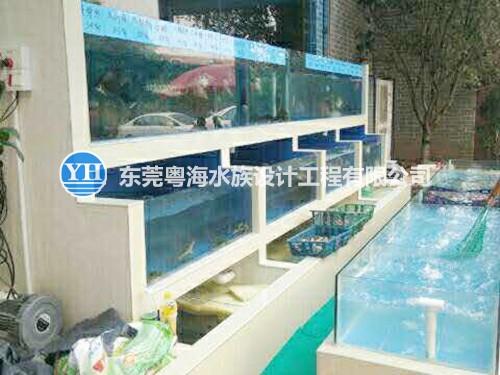 专业海鲜池制作建造维修