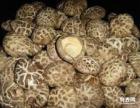 香菇批发 冬菇 花菇批发价格来自干香菇的产地湖北随州-干香菇