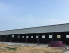 钢结构厂房低价租赁,欢迎创业的朋友们咨询