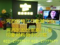 天津芝麻街 免费试听 能力培养 印象城少儿英语