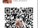 拉布拉多导盲犬专卖 实体拍摄 极品大骨架宽嘴拉多幼犬