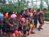 北京中合育才夏令营 能帮助孩子哪些