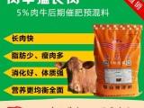 天气冷牛吃什么饲料长肉