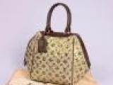 路易.威登Louis Vuitton新款 女士手腕包包 M407