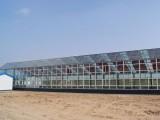 安徽合肥农业高科技园区温室全自动智能控制施工厂家