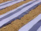 优惠的黑白相间地膜就在昊源塑胶-地膜销售公司