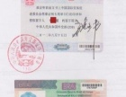 VIP-美国加拿大英国澳洲申根等签证申请代办理**