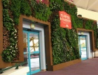 昆明室内动物墙-首选绿墙景观