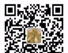 2016峡江万亩杨梅6月1日到6月13之间开始采摘