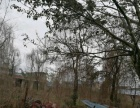 新都石板灘土地及房屋