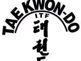 ITF纵横跆拳道馆教你真正的跆拳道格斗防身术