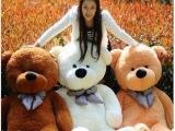 正版1.8米泰迪熊毛绒玩具大号娃娃生日礼物送女友 厂家直销玩具熊