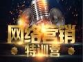 蓝晖科技网站优化技术 电子商务技能培训