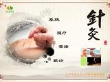 广州天河区针灸推拿按摩培训中心 手把手中医针灸技能教学
