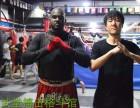 北京北武堂散打搏击俱乐部-北京北武堂拳击俱乐部