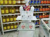 机器人,您一生的伴侣