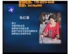 张红春生命的留言历代手札法28讲8DVD教学光盘