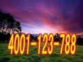 欢迎访问(丹阳阿里斯顿洗衣机官方网站)各点售后服务咨询电话