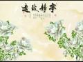 惠州专业贴墙布墙纸