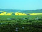 们全家前往风景如画的内蒙古呼伦贝尔大草原旅游