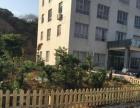 宁海风光第一厂房出租,薛岙 厂房 3000平米
