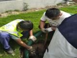 温州疏通下水道 通厕所