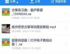 袁莎古筝视频教程名师古筝零基础入门到精通自学资料