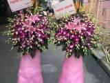 上海市杨浦区周家嘴路长阳路大名路实体鲜花店开业开张花篮