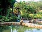 铜仁九龙洞温泉、万亩茶园一日游128元起