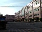 长安村委独院厂房一楼2楼出租带精装修无公摊